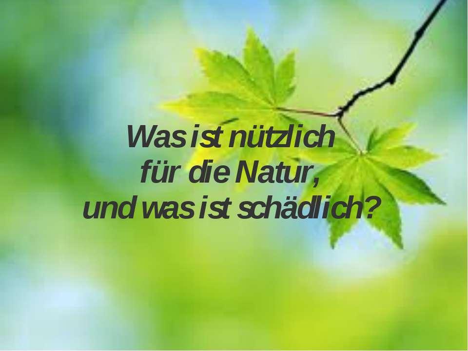 Was ist nützlich für die Natur, und was ist schädlich?