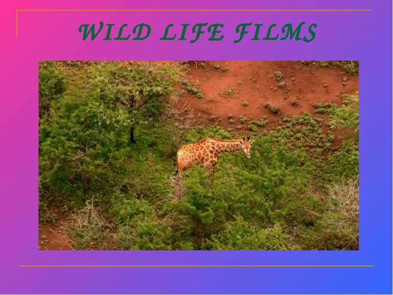 WILD LIFE FILMS