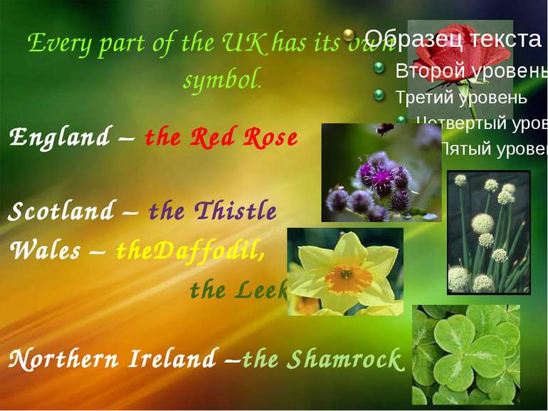 Every part of the UK has its own symbol. England – the Red Rose Scotland – th...