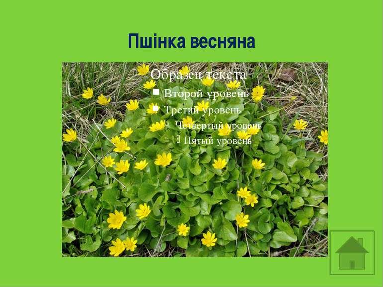 https://lh4.ggpht.com/1pVQ6TL2M7CKWe_NAHAjhttp://www.wintube.ru/video/_1DphKs...