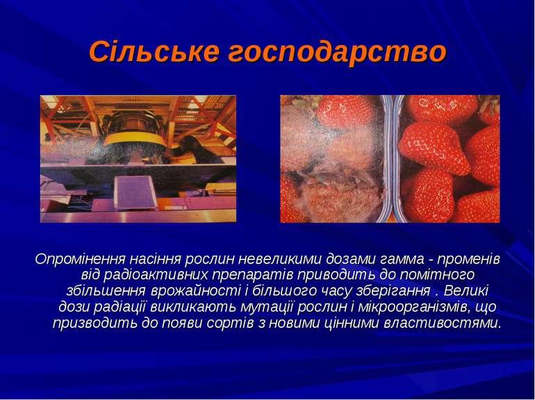 Сільське господарство Опромінення насіння рослин невеликими дозами гамма - пр...