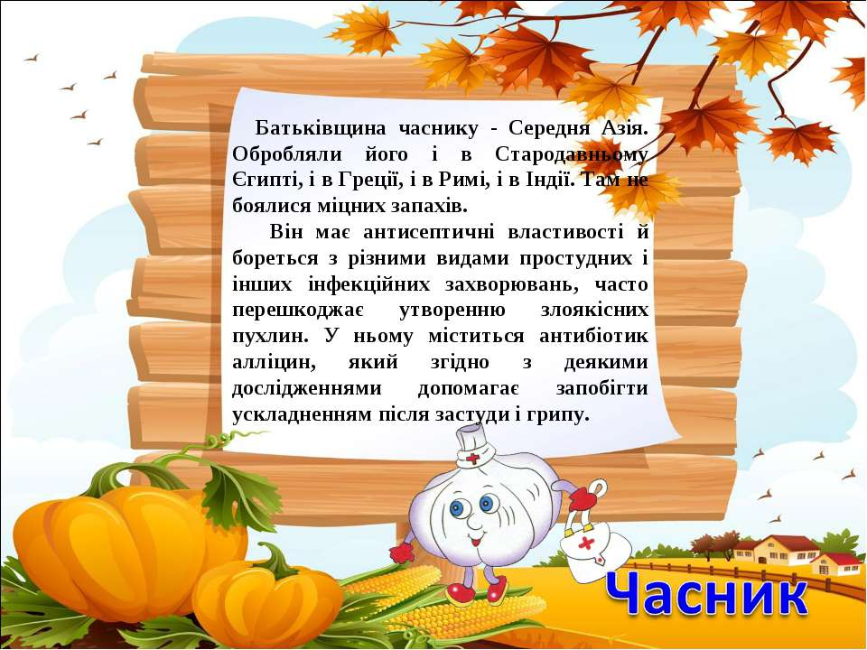 Батьківщина часнику - Середня Азія. Обробляли його і в Стародавньому Єгипті, ...