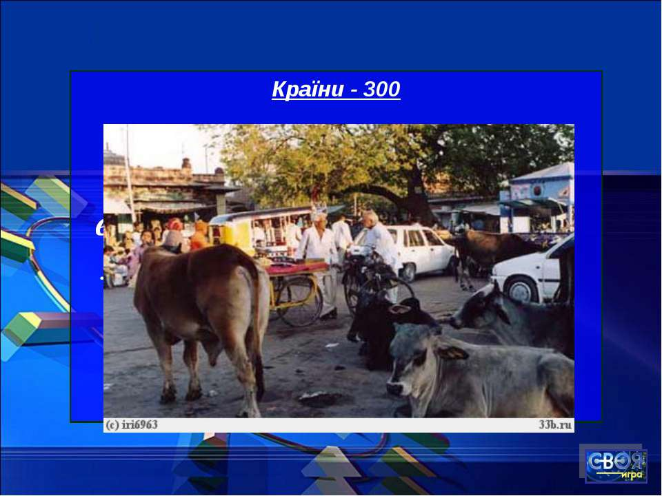 Країни - 300 У якій країні не можна використовувати яловичину як начинку для ...