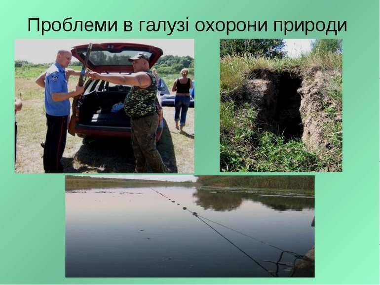 Проблеми в галузі охорони природи