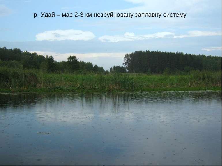 р. Удай – має 2-3 км незруйновану заплавну систему