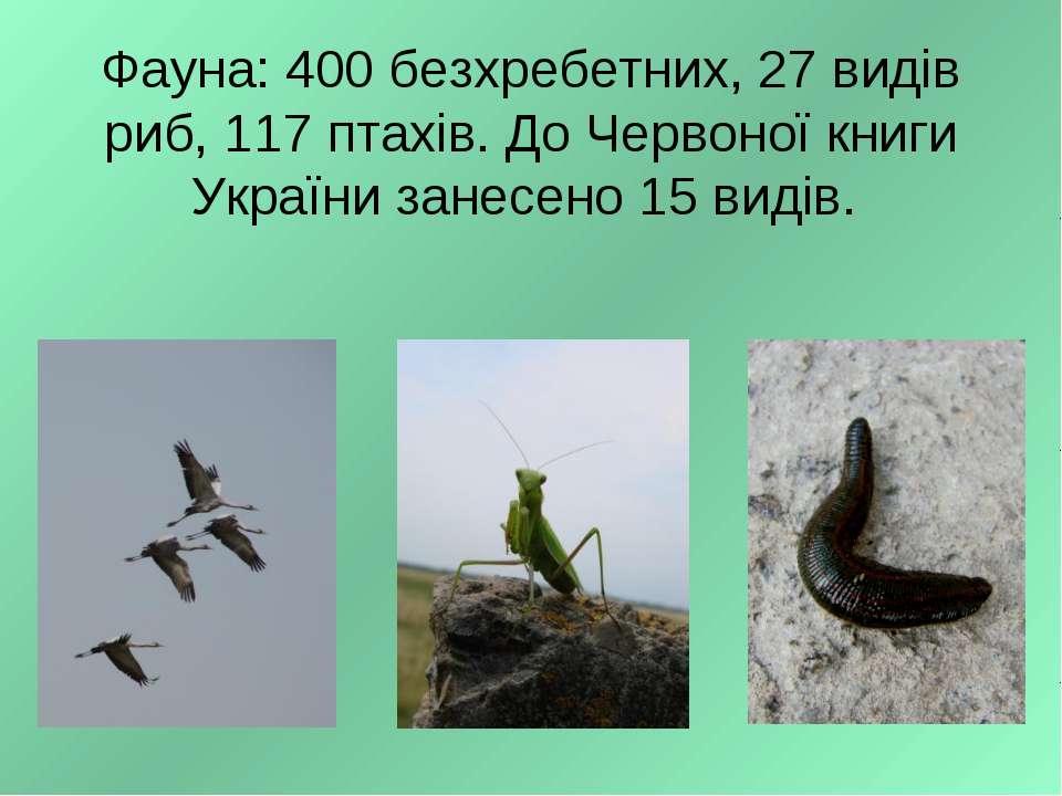 Фауна: 400 безхребетних, 27 видів риб, 117 птахів. До Червоної книги України ...