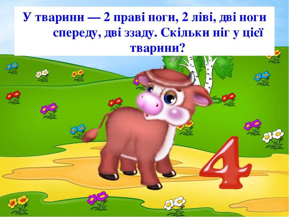 У тварини — 2 праві ноги, 2 ліві, дві ноги спереду, дві ззаду. Скільки ніг у ...