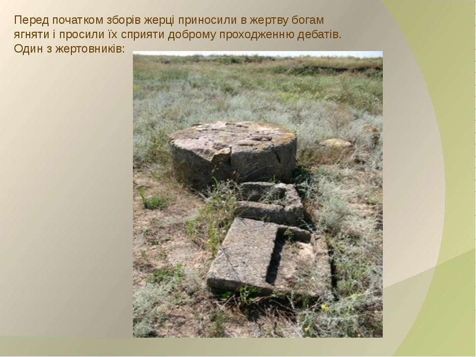 Перед початком зборів жерці приносили в жертву богам ягняти і просили їх спри...