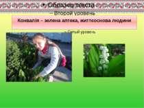 Конвалія – зелена аптека, життєоснова людини