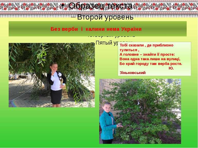 Без верби і калини нема України Тобі сказали , де приблизно тулиться , А голо...
