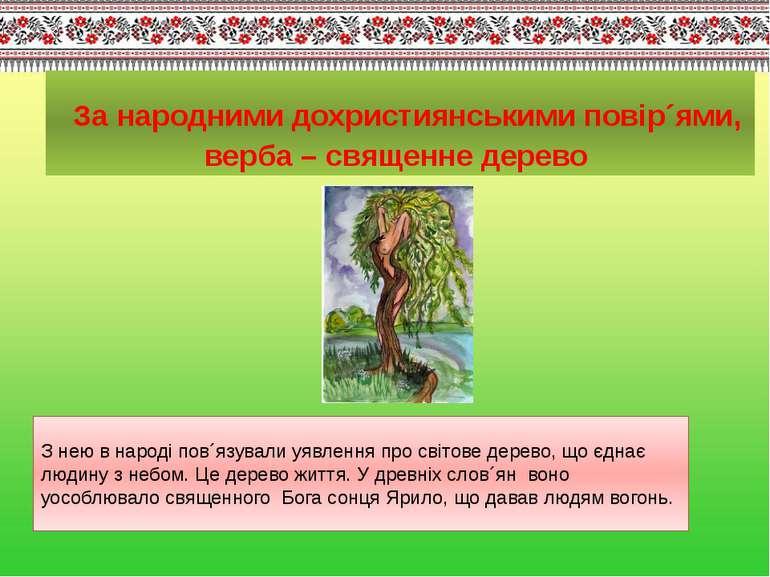 За народними дохристиянськими повір´ями, верба – священне дерево З нею в наро...