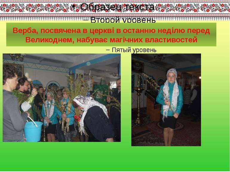 Верба, посвячена в церкві в останню неділю перед Великоднем, набуває магічних...
