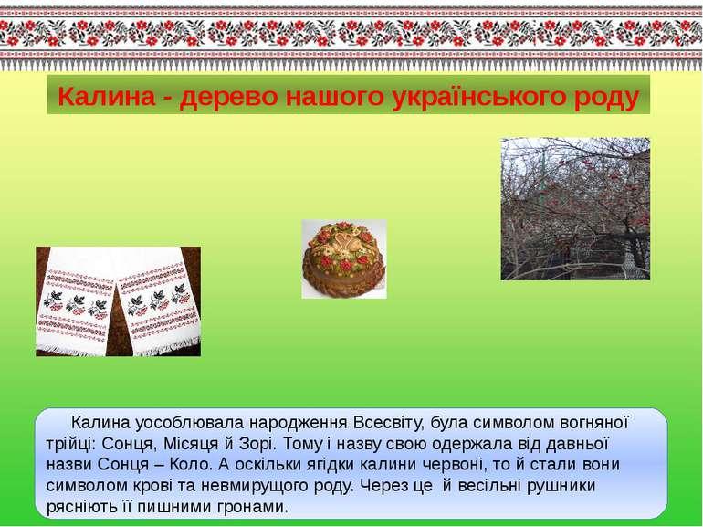 Калина - дерево нашого українського роду Калина уособлювала народження Всесві...
