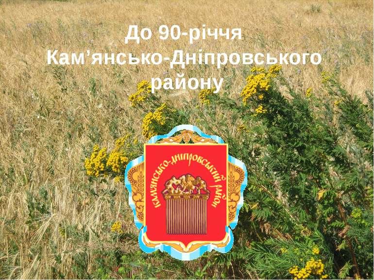 До 90-річчя Кам'янсько-Дніпровського району