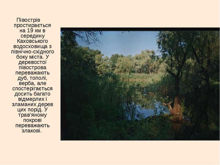 Півострів простирається на 19 км в середину Каховського водосховища з північн...