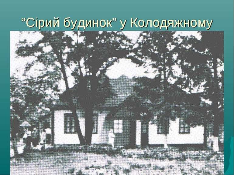 """""""Сірий будинок"""" у Колодяжному"""