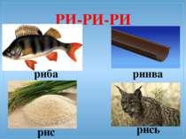 РИ-РИ-РИ риба рис ринва рись