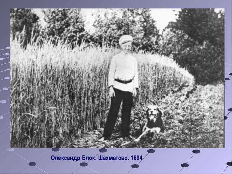 Олександр Блок. Шахматово. 1894