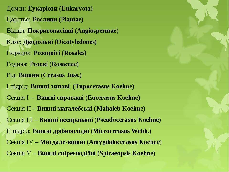 Домен: Еукаріоти (Eukaryota) Царство: Рослини (Plantae) Відділ: Покритонасінн...