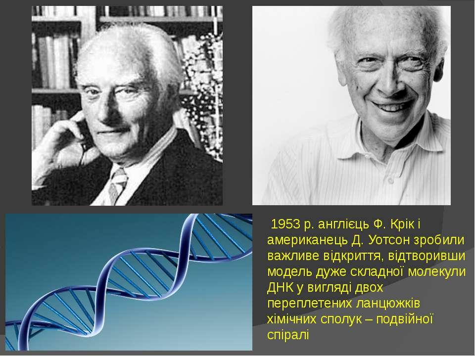1953 р. англієць Ф. Крік і американець Д. Уотсон зробили важливе відкриття, в...