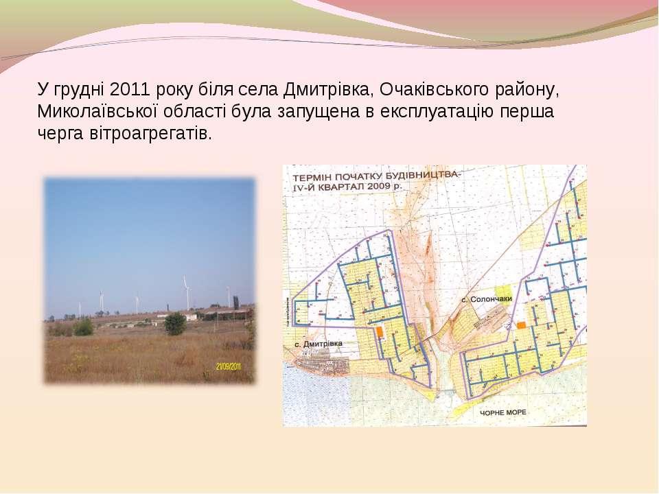 У грудні 2011 року біля села Дмитрівка, Очаківського району, Миколаївської об...