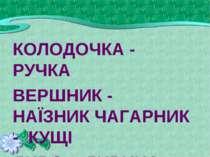 КОЛОДОЧКА - РУЧКА ВЕРШНИК - НАЇЗНИК ЧАГАРНИК - КУЩІ ДИВО - ДИВИНА