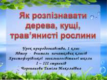 Урок природознавства, 1 клас Автор - вчитель початкових класів Христофорівськ...