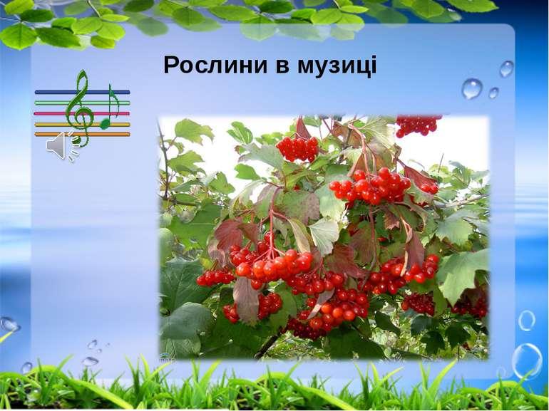 Рослини в музиці