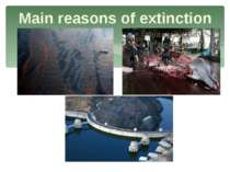 Main reasons of extinction
