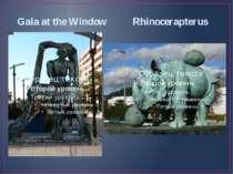 Gala at the Window Rhinocerapterus