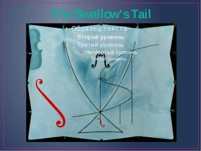 The Swallow's Tail
