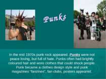 Punks In the mid 1970s punk rock appeared. Punks were not peace loving, but f...