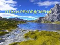 ПТАХИ-РЕКОРДСМЕНИ