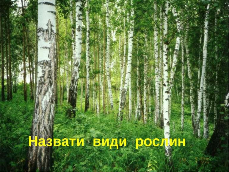 Назвати види рослин