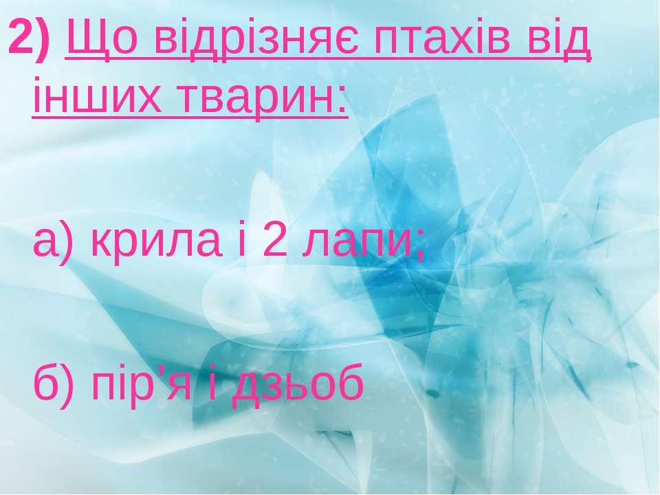 2) Що відрізняє птахів від інших тварин: а) крила і 2 лапи; б) пір'я і дзьоб