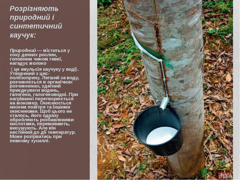 Розрізняють природний і синтетичний каучук: Природний — міститься у соку деяк...