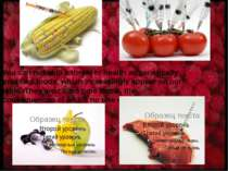 You can not skip a threat to health as genetically modified foods, which incr...