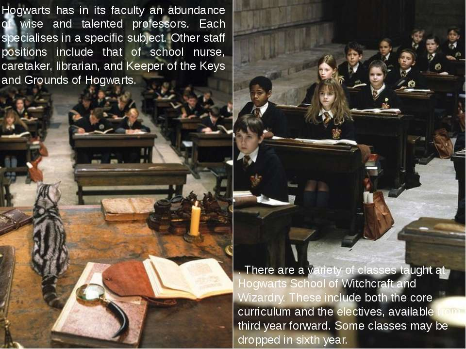 Hogwarts has in its faculty an abundance of wise and talented professors. Eac...
