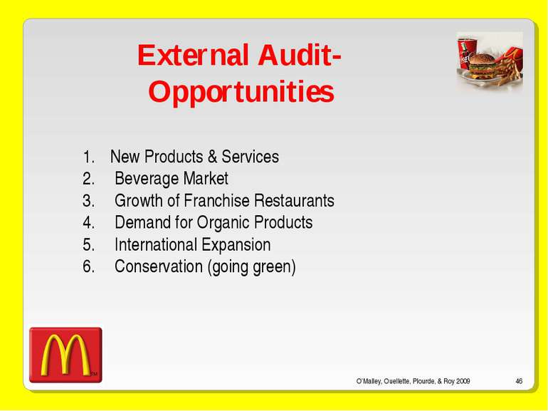 O'Malley, Ouellette, Plourde, & Roy 2009 * External Audit- Opportunities New ...