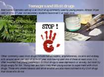Teenagers and illicit drugs Marijuana (Cannabis sativa) is an illicit drug co...