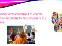 Primary forms comprise 1 to 4 forms. Junior secondary forms comprise 5 to 9 f...