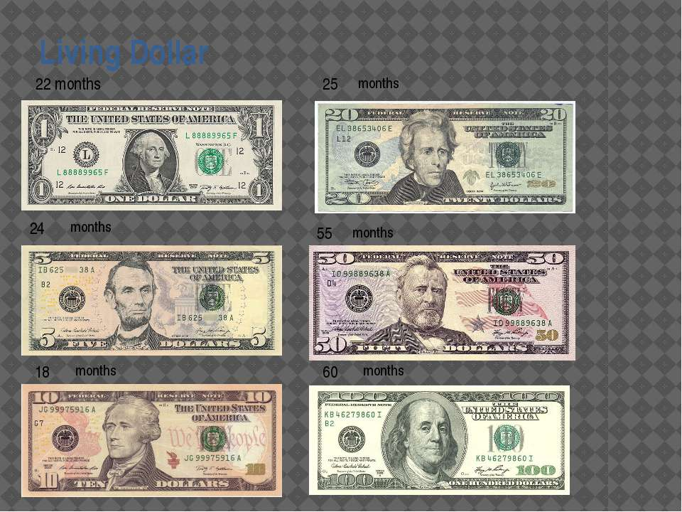 Living Dollar 24 18 25 55 60 months months months months months 22 months