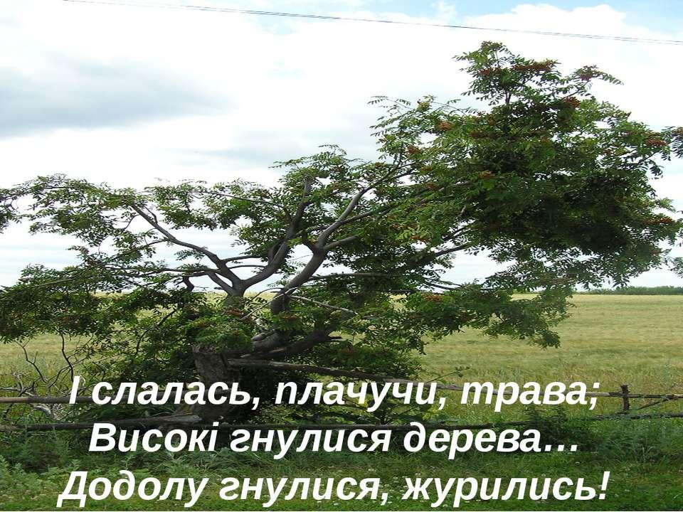 І слалась, плачучи, трава; Високі гнулися дерева… Додолу гнулися, журились!
