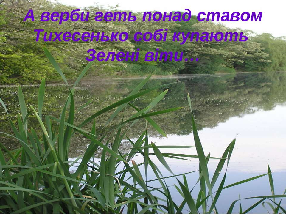 А верби геть понад ставом Тихесенько собі купають Зелені віти…