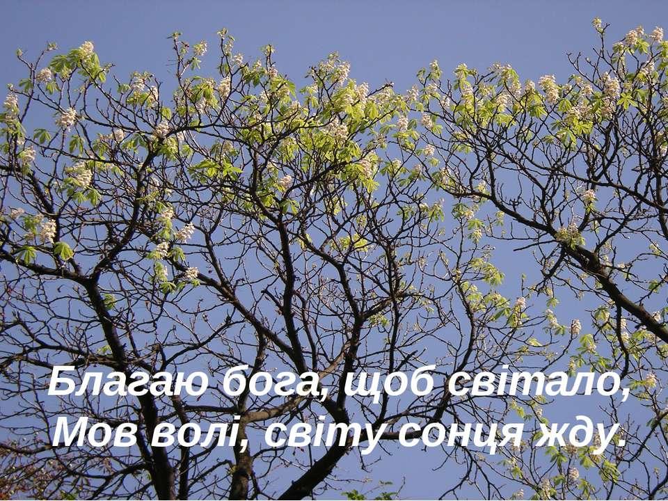 Благаю бога, щоб світало, Мов волі, світу сонця жду.