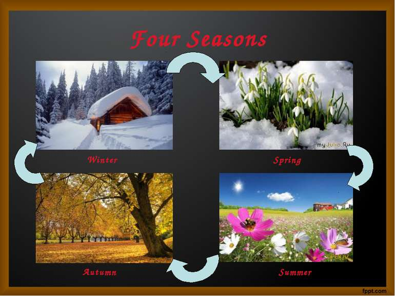 Four Seasons Winter Spring Autumn Summer