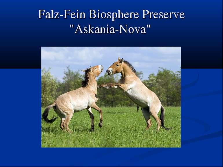"""Falz-Fein Biosphere Preserve """"Askania-Nova"""""""