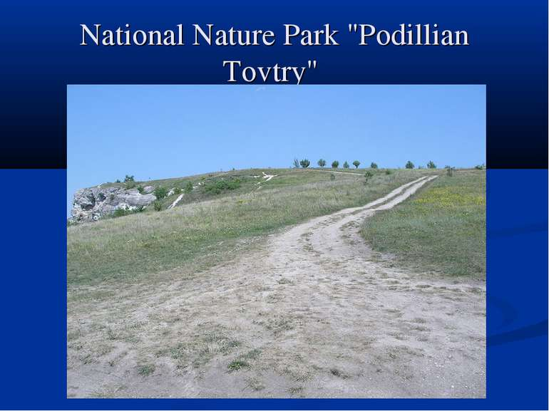 "National Nature Park ""Podillian Tovtry"""