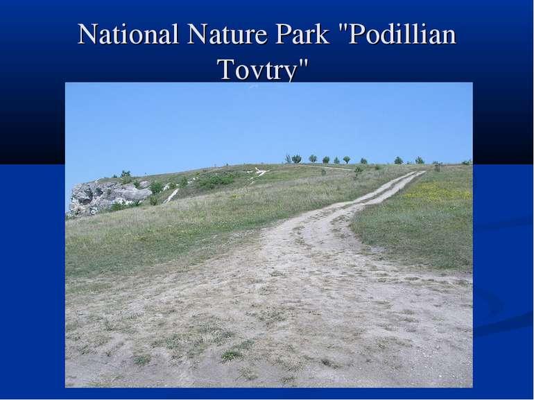 "National Nature Park ""Podillian Tovtry"""