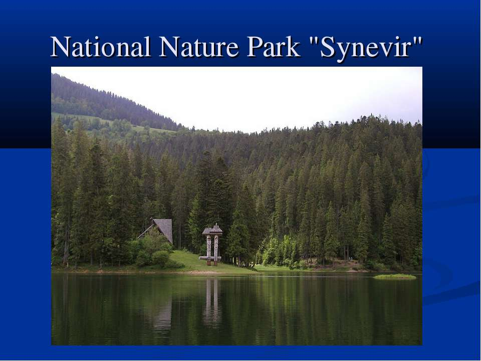 "National Nature Park ""Synevir"""